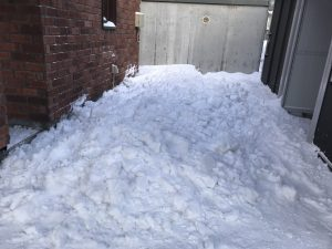 落とした雪