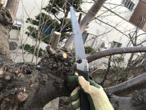 枝切り作業