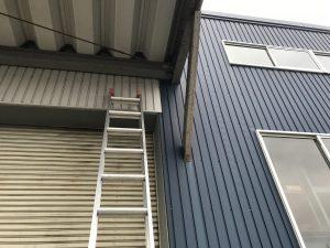 二連梯子で巣の撤去