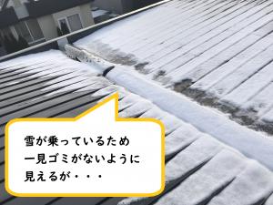 この程度の雪ならば掃除可能