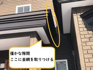 玄関の小屋根に雀の巣