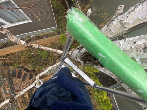 巣の撤去は必ず高所作業なので危険と隣り合わせ