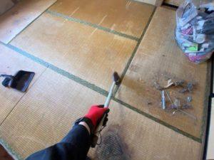 掃き掃除作業